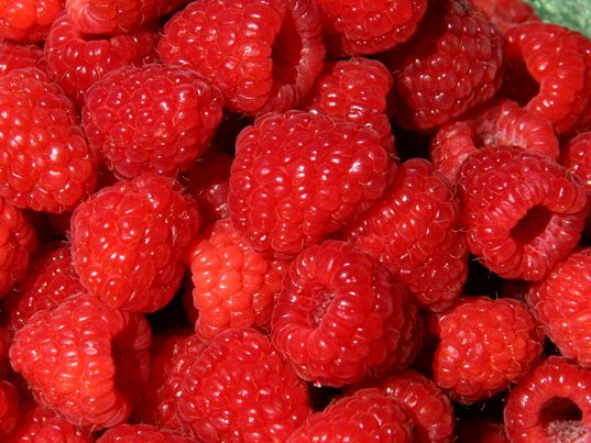 ourberries_raspberries